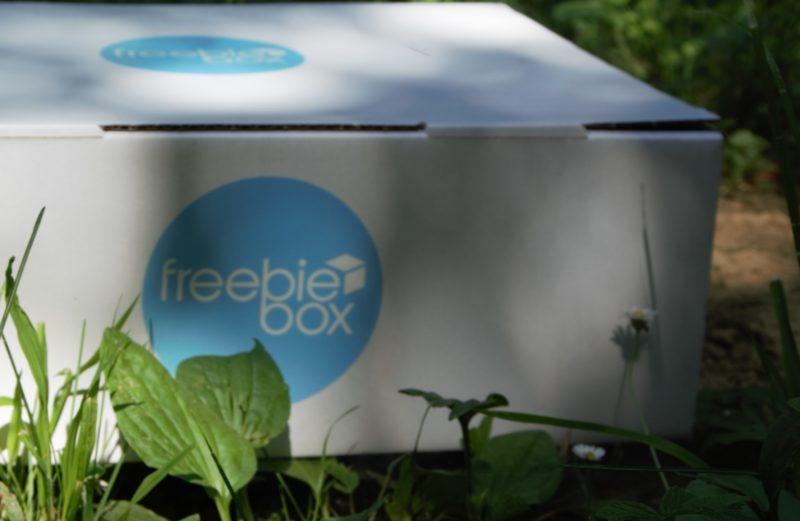 Freebiebox goes Green – helft uns einen Baum zu pflanzen!